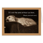 Yellow Lab Pit Husky  I Miss You Card