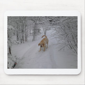 Yellow Lab Playing in Fresh Winter Snow Mousepads
