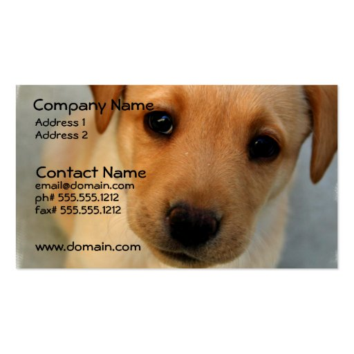 Yellow Lab Puppy Business Card