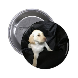Yellow Lab Puppy Sadie Pinback Button