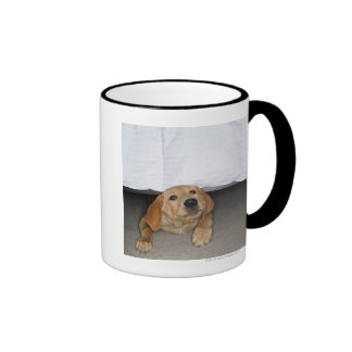Yellow lab puppy stuck under bed ringer coffee mug