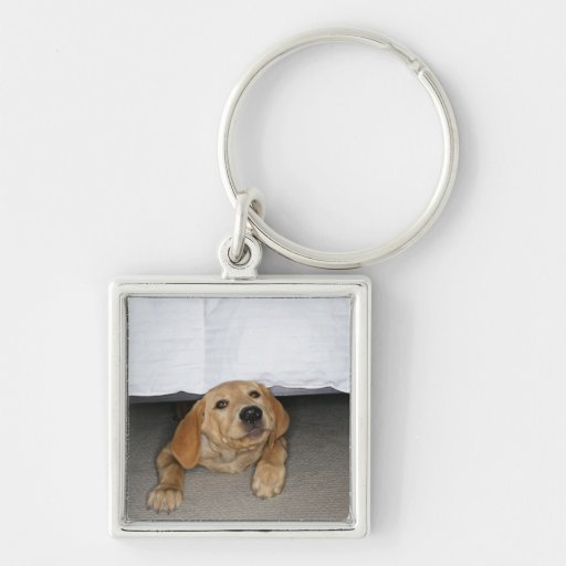 Yellow lab puppy stuck under bed Silver-Colored square keychain