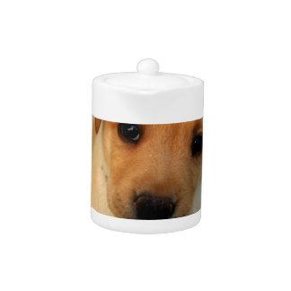 Yellow Lab Puppy Teapot