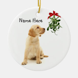 Yellow Lab Ornaments & Keepsake Ornaments | Zazzle