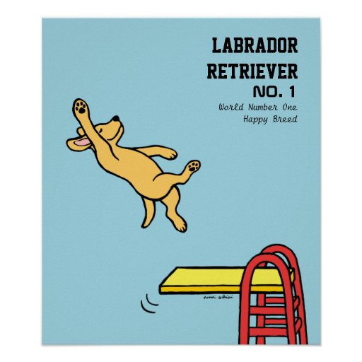 Yellow Labrador Diving Cartoon Poster