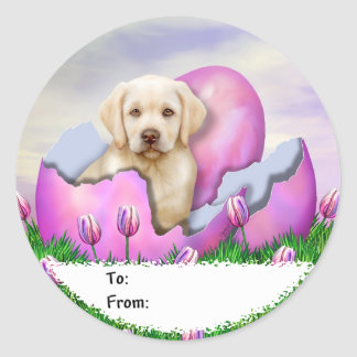 Yellow Labrador Easter Surprise Classic Round Sticker