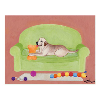 Yellow Labrador on the green couch Postcard