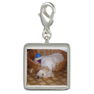 yellow labrador pup.png charms