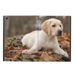 Yellow Labrador Puppy In Autumn Cover For iPad Air