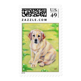 Yellow Labrador Puppy Postage Stamps