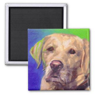 Yellow Labrador Retriever 2 Inch Square Magnet