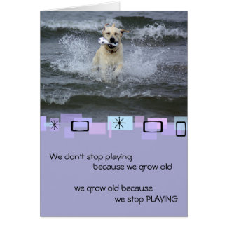 Yellow Labrador Retriever Birthday Greeting Card