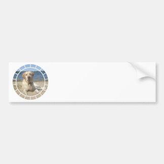 Yellow Labrador Retriever Bumper Stickers