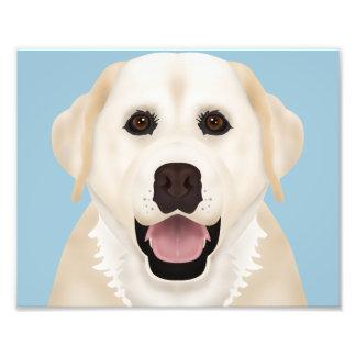 yellow labrador retriever cartoon photo print