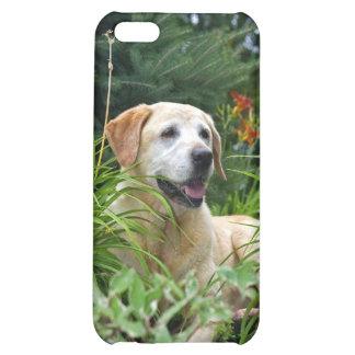 Yellow Labrador Retriever in a flower garden. Case For iPhone 5C