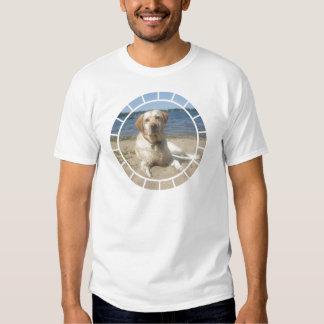 Yellow Labrador Retriever Men's T-Shirt