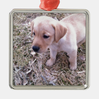 Yellow Labrador Retriever Metal Ornament