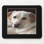 Yellow Labrador Retriever Mousepad