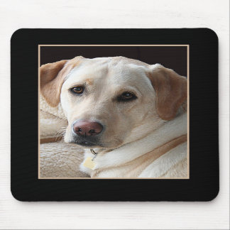 Yellow Labrador Retriever Mousepad