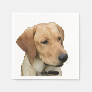 Yellow Labrador Retriever Napkin