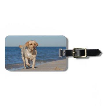 Beach Themed Yellow labrador retriever on the beach luggage tag