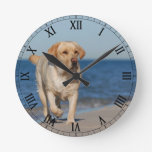 Yellow labrador retriever on the beach round clock
