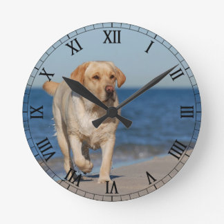 Yellow labrador retriever on the beach round clock