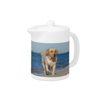 Yellow labrador retriever on the beach teapot