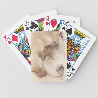 Yellow Labrador Retriever puppies, 10 days old Bicycle Playing Cards