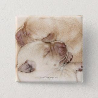 Yellow Labrador Retriever puppies, 10 days old Button