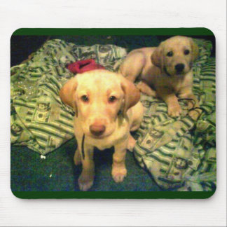 Yellow labrador retriever puppies mouse pad