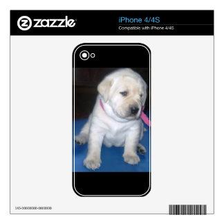 Yellow Labrador Retriever Puppy ~ 4/4S Iphone Skin iPhone 4 Decals
