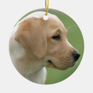 Yellow labrador retriever puppy ceramic ornament
