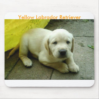 Yellow Labrador Retriever Puppy Mouse Pad