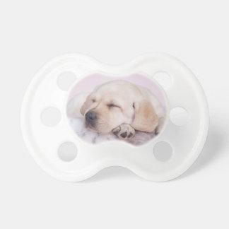 Yellow labrador retriever puppy pacifier