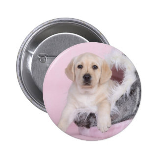 Yellow labrador retriever puppy pinback button