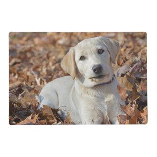 Yellow Labrador Retriever Puppy Placemat