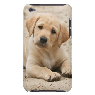 Yellow labrador retriever puppy Puppy in the sand Case-Mate iPod Touch Case