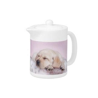 Yellow labrador retriever puppy teapot