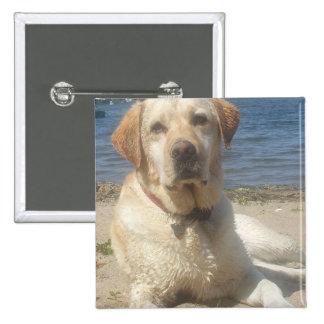 Yellow Labrador Retriever Square Pin