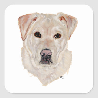 Yellow Labrador Retriever Square Sticker