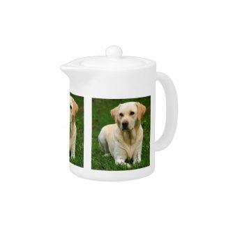 Yellow Labrador Retriever Teapot