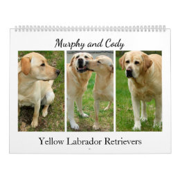 Yellow Labrador Retrievers 2017 Calendar