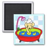 Yellow Labrador & Rubber Ducks Cartoon 2 Inch Square Magnet