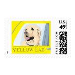 Yellow Labrador Shirt Stamp