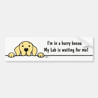 Yellow Labrador watching you Bumper Sticker