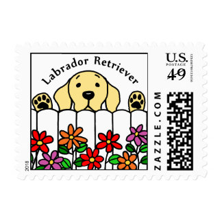 Yellow Labrador watching you Postage Stamp
