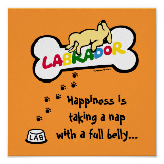 Yellow Labrador with a full belly Cartoon Poster