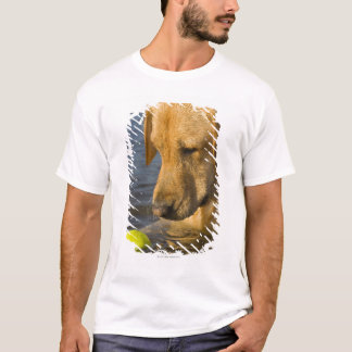 Yellow labrador with a tennis ball in the water T-Shirt