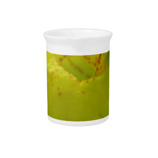 Yellow Lady Slipper Beverage Pitcher